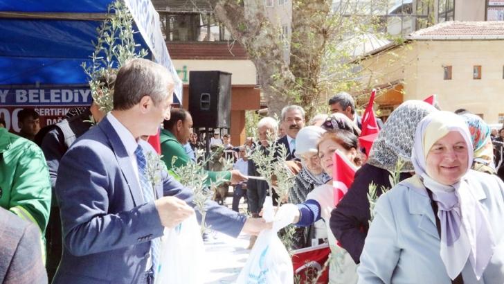 Şahinbey Belediyesi zeytin fidanı dağıttı