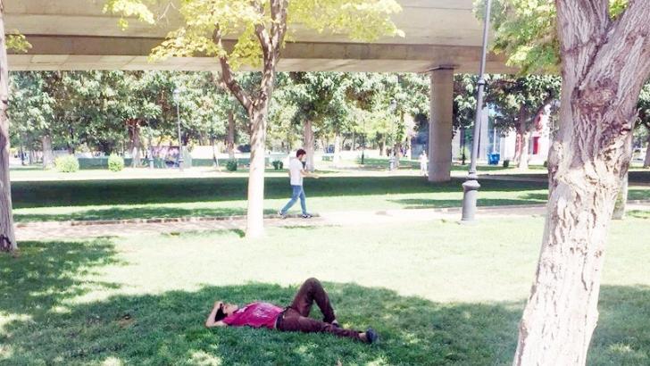 Sıcaklardan bunalanlar ağaç gölgesinde serinliyor
