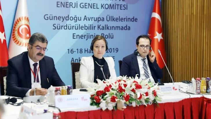 Bakbak, Türkiye'nin enerji stratejisine değindi
