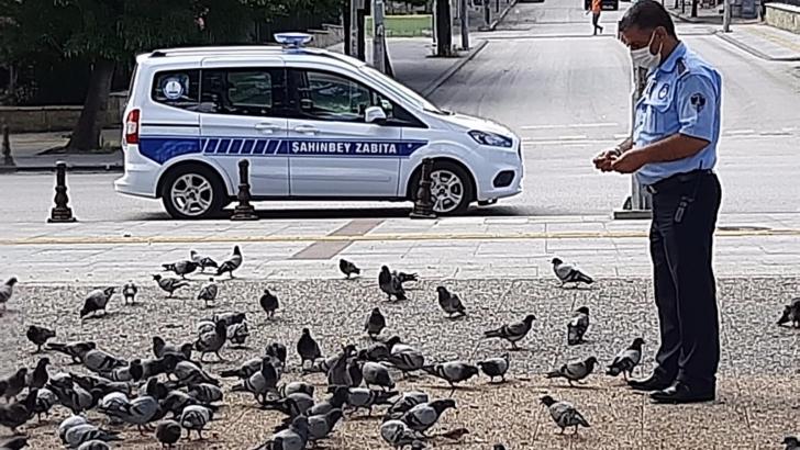 Sokak hayvanları besleniyor