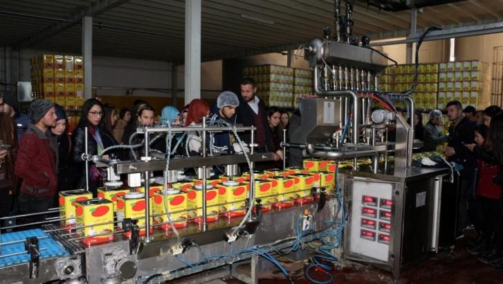 Üniversiteliler ayçiçek yağı üretimini mercek altına aldı