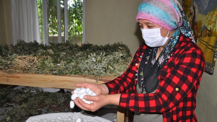 3 çocuk annesi, aldığı teşvikle ipek böceği yetiştirmeye başladı